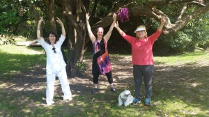 Qigong under the trees
