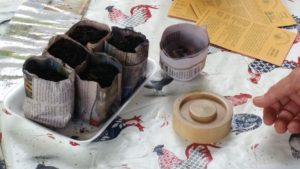 Seed pots ready for planting