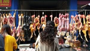 Selecting fresh organic poultry for dinner