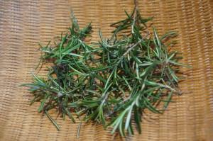 """Drug """"Rosemary"""""""