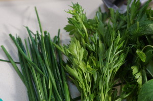 Freshly cut organic herbs from the garden