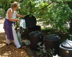 compost, worm farm and liquid manure and seaweed bins